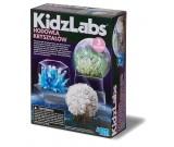 Hodowla kryształów 3 wzory - KidzLabs 00-03917