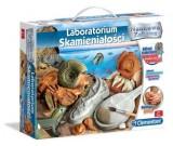 Laboratorium skamieniałości - Naukowa Zabawa 60585
